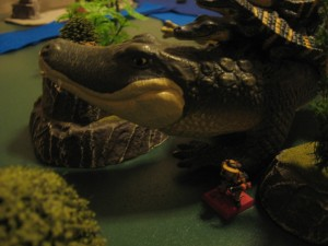 BTS-Dunes-Park-Alligator-0007