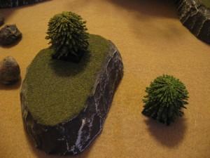 DC-Interior-Cacti-Trees-0021