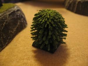 DC-Interior-Cacti-Trees-0022