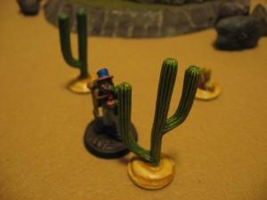 DC-Interior-Cacti-Trees-0009