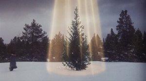Christmas-Vacation-Tree